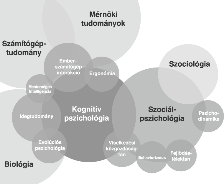 A különböző pszichológiai ágak közötti kapcsolatok